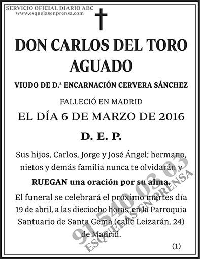Carlos del Toro Aguado